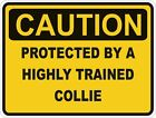 1x CAUTION PROTECTED BY COLLIE WARNING FUNNY STICKER DOG PET DECAL VINYL
