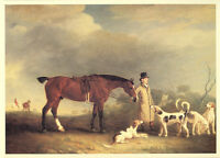 FOXHOUND HUNTER HORSE DOG FINE ART PRINT TEDWORTH HUNT T ASSHETON SMITH (Large)