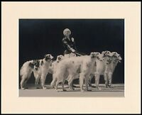 BORZOI PRETTY LADY GROUP OF DOGS LOVELY DOG PHOTO PRINT MOUNTED READY TO FRAME