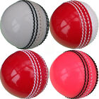 getpaddedup PRACTICE TRAINING CRICKET BALLS Red White Yellow Pink, Adult Youth