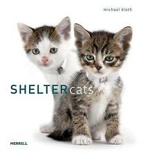 Shelter Cats, Michael Kloth, New Book