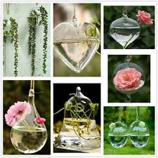 Hanging Glass Flower Plant Vase Hydroponic Container Pot Home Garden Decoration