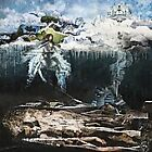 The Empyrean by John Frusciante (Vinyl, 2012, 2 Discs, Record Collection...