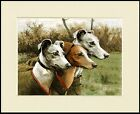 WHIPPET THREE DOGS LOVELY DOG PRINT MOUNTED READY TO FRAME