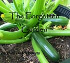 Zucchini Seed Black Beauty 20 Seeds Heirloom Vegetable Garden
