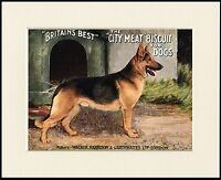 GERMAN SHEPHERD LOVELY DOG FOOD ADVERT PRINT MOUNTED READY TO FRAME