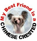 2 Chinese Crested Car Stickers By Starprint