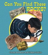 Can You Find These Rocks? by Carmen Bredeson and Lindsey Cousins (2012,...