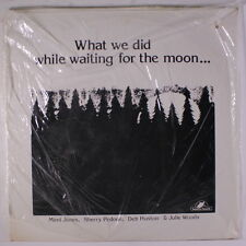 VARIOUS: What We Did While Waiting For The Moon LP Sealed (Watertown, Massachus