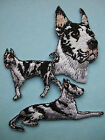 IRON-ON EMBROIDERED PATCH - HARLEQUIN DANE - DOG