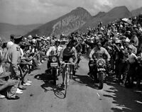 Eddy Merckx Tour de France Cycling Legend 10x8 #1
