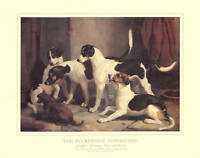 FOXHOUND FOXHUNTING KENNEL DOG ART PRINT - The Puckridge Hounds (Large) Woodward