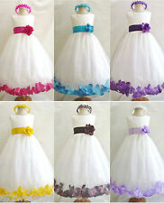NEW IVORY TURQUOISE FUCHSIA PURPLE LILAC BROWN ROSE PETALS FLOWER GIRL DRESS