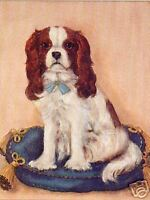 CAVALIER KING CHARLES ENGLISH TOY SPANIEL CKCS DOG ART PRINT - Classic Study
