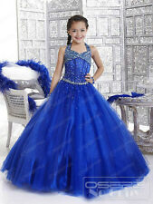 Christening Princess Bridesmaid Wedding Dance Party Pageant Flower Girl Dresses