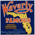 WAVERLY Vintage Florida Citrus Fruit Crate Label, *AN ORIGINAL FRUITCRATE LABEL*
