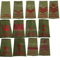 Duke of Lancasters Rank Slide All Ranks worn on MTP Multi Terrain Pattern