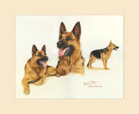 Original German Shepherd Painting by Robert J. May