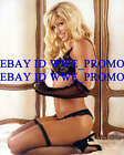 TORRIE WILSON PHOTO 8x10 SEXY Picture In Black Out Fit #T9OW7