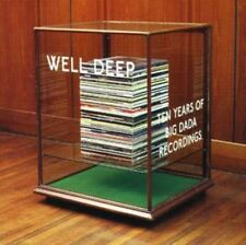 Well Deep: 10 Years Of Big Dada Records, Various Artists