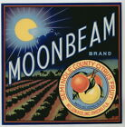 MOONBEAM Vintage Oviedo Florida Citrus Crate Label, Astronomy, AN ORIGINAL LABEL