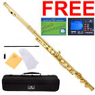 Cecilio 2Series C Flute Gold Lacquer Closed-Hole +Tuner