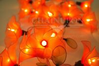 20 ORANGE FLOWER STRING PARTY,PATIO,FAIRY,DECOR,CHRISTMAS,WEDDING,BEDROOM LIGHTS