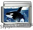 ORCA KILLER WHALE OCEAN Photo Italian Charm 9mm - 1 x OC016 Single Bracelet Link