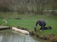 Barley straw bale for alga & blanket weed in fish ponds