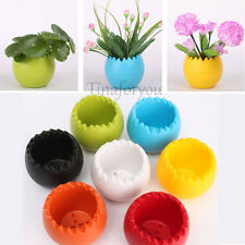 Egg design Colourful Home Office Decor Planter Round Plastic Plant Flower Pot