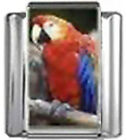 PARROT BIRD Photo Italian Charm 9mm Link - 1 x BI222 Single Bracelet Link