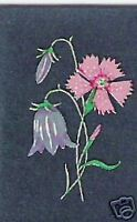 Maiden Pink/Harebell Flowers Decal Transfers(Med) x 50