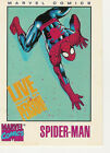 1992 MARVEL COMICS LIVE AND IN PERSON SPIDER-MAN SPIDERMAN AUTO STAN LEE