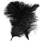 New 10 PCS Wholesale Quality Natural OSTRICH FEATHERS 12 14 Inch Black Color