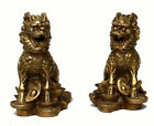 China Chinese Fengshui Brass animal Door Kylin Chi-lin Qilin wealth Statue Pair