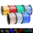 LED Rope Light 2 Wire 110V Lighting Outdoor Xmas Christmas Custom Length 3 300