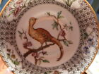 c1869+ Worcester Porcelain Cup Saucer Pheasant Richard Briggs Boston NO RESERVE