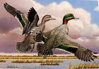 1987-88 ~ Kansas ~ First Of State ~ Duck Stamp Print & Stamp ~ Pintails ~ S & N