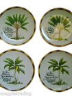 Assorted Salad Dessert Plate 4 Piece Set Fitz And Floyd Cape Town Microwave Safe