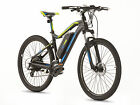 GREENWAY electric mountain bike PANASONIC cell lithium battery LCD PAS system