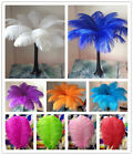 Wholesale 10 200pcs High Quality Natural Ostrich Feathers 6 24inches 15 60cm