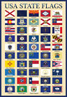 USA 50 State Flags Chart Poster Print 13x19