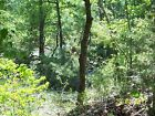 Oklahoma Hunting Mtn Camping Land w creek 5 Acres near Wilburton 200 mo