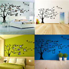 Large Photo Frame Family Tree Removable Wall Decal Sticker Kid Room Home Decor B