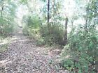 TN 1 Wooded Acre Private Lake Blocks Away Fully wooded acre