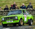 BIL 5061 THE GRP 4 HISTORIC MK2 ESCORT RALLY CAR OF WILL ROWLANDS