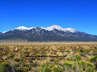 5 ACRE COLORADO MOUNTAINS RANCH HOME HUNT FISH SKI 150 MO TERMS