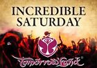 2 x Incredible Saturday Pass Tomorrowland Tickets pour Samedi 22 juillet 2017