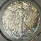 1987 1AMERICAN SILVER EAGLE MINT STATE  PCGS MS 68 SPLASHED COLOR TONED