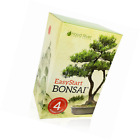 EasyStart Bonsai Kit Everything Needed to Grow 4 Beautiful Bonsai Trees